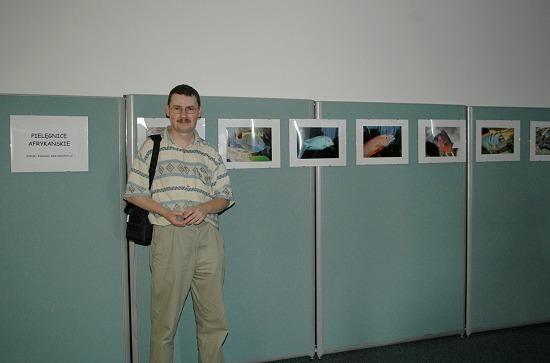 wystawa_az