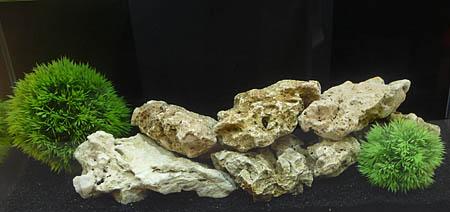 aquaone2
