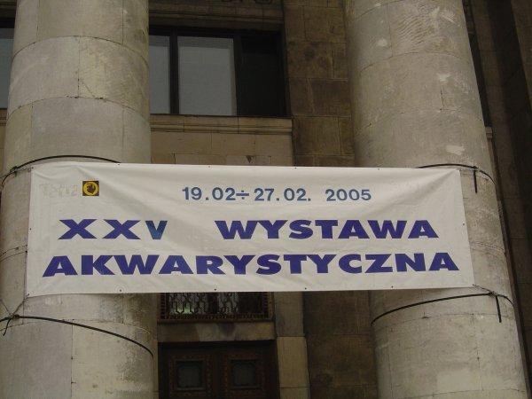 1_2005