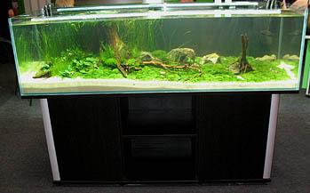 aquael19