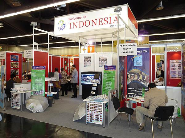 indonezja5