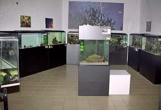 wystawa202