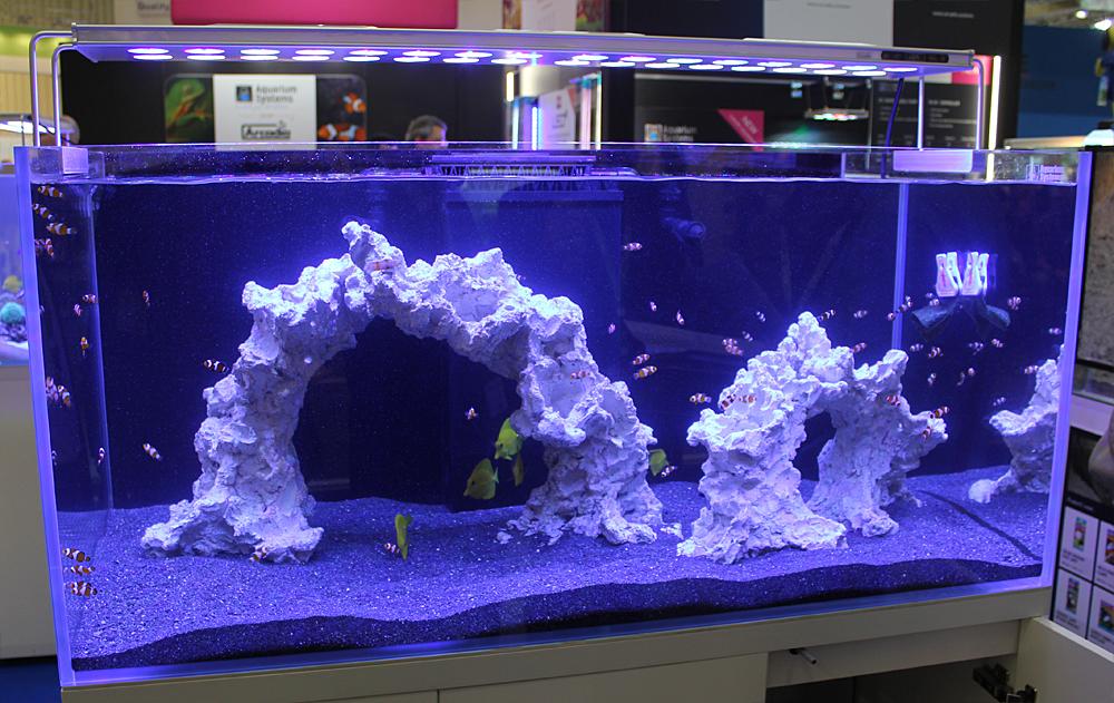 aquarium system1