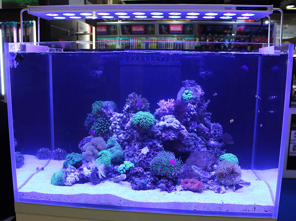 aquarium system2
