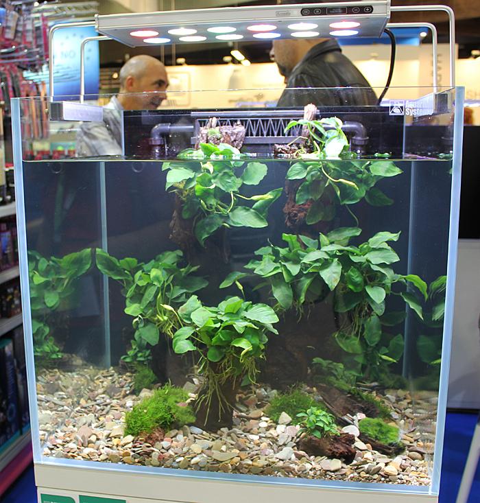 aquarium system3