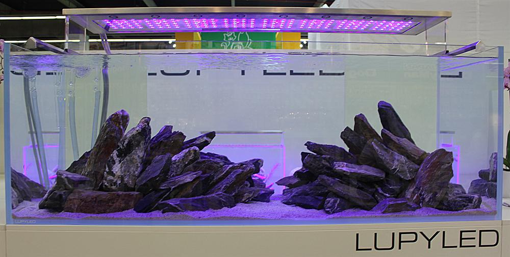 lupy led2