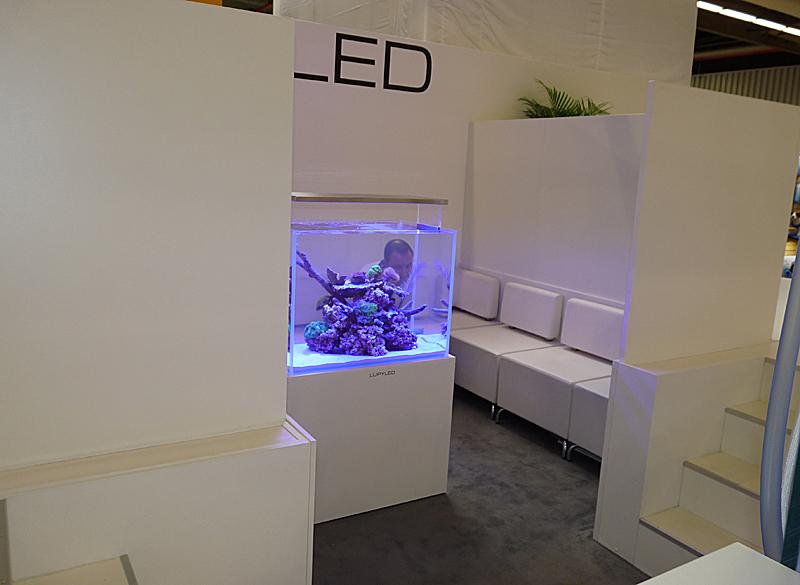 lupy led4